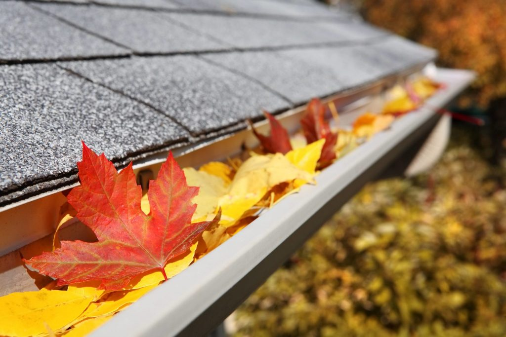 gutter-cleaning-cambridge-ma